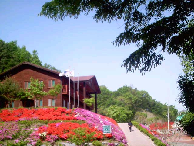 봄맞은휴양관.jpg